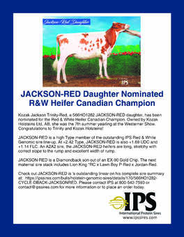 566ho1282 JACKSON-RED Daughter Nominated