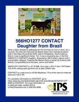 566HO1277 CONTACT Daughter from Brazil