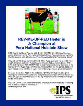 REV-ME-UP Daughter at Peru National Holstein Show